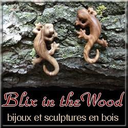 Blix in the Wood: bijoux et sculptures en bois - Art`n Wood: créatrice de bijoux et sculptures en matières naturelles